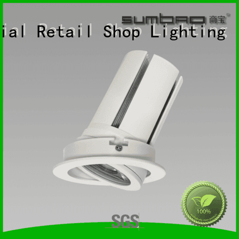 4 inch recessed lighting Dumb white customized LED Recessed Spotlight SUMBAO Warranty