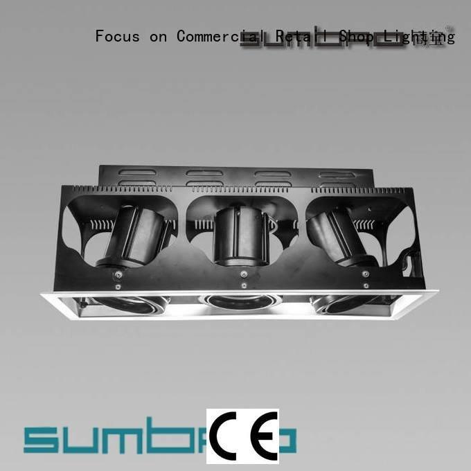 Custom LED Recessed Spotlight dw0303 3000K voltage SUMBAO