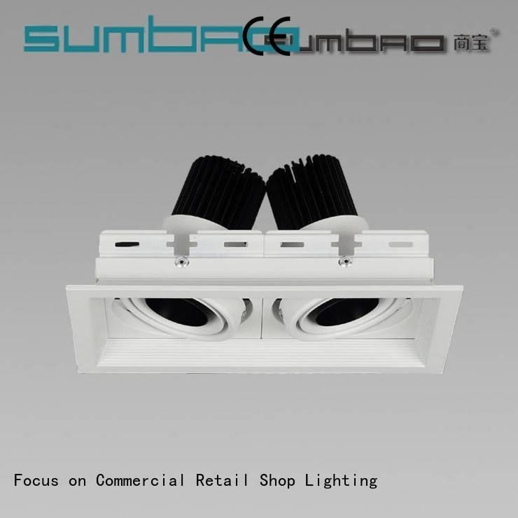 OEM 4 inch recessed lighting spotlights dw0521 trunk LED Recessed Spotlight